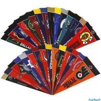 Officially Licensed NHL Mini Pennant Set 30pc   Final Playoff